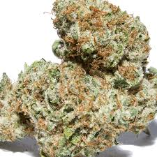 Death Star (Indica) | death star strain | death star weed | death star | find a death | deathstar | the death star | marijuana deaths