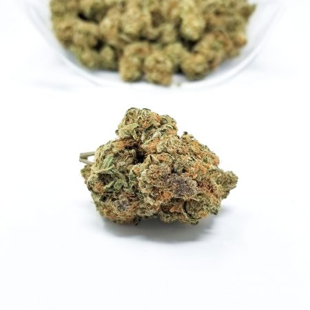 Girl Scout Cookies Wholesale (1 Pound) | abcsmartcookies | lemon girl scout cookies | scouted | brownie scout strain | cookie dough strain